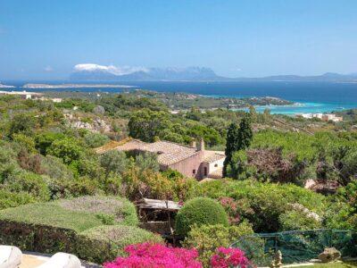 Villa Zemira For Rent, Pevero Golf Costa Smeralda, Sardinia (italy) (1)